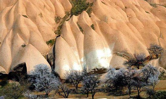 Kapadokya baharla birlikte tablo gibi... galerisi resim 1