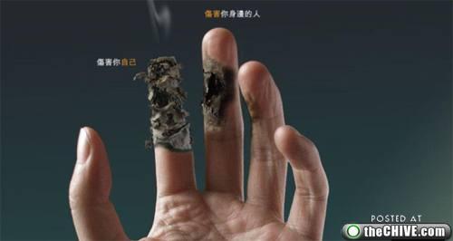 Sigarayı Bıraktıran Reklamlar galerisi resim 1