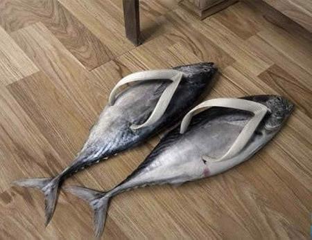 Güldüren ayakkabılar galerisi resim 1