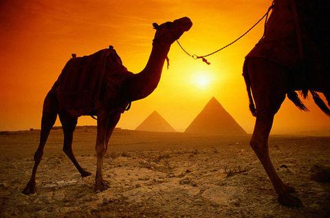 İçinizi ısıtacak ülke Mısır galerisi resim 25