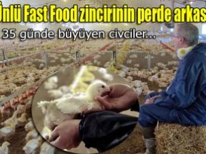 Ünlü Fast Food zincirinin perde arkası... Gazla öldürüyorlar...