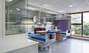 Hastaneyi sinekler bastı, ameliyatlar iptal!