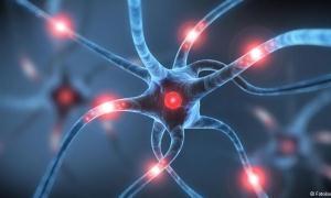 Psikiyatrinin geleceği sindirim sisteminde