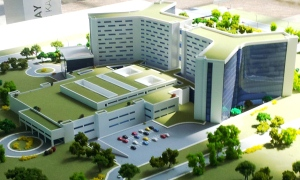 Hastane değil şirketlere darphane
