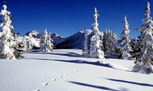 Kar yağışının faydaları