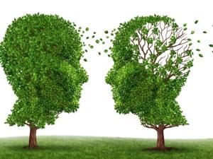 Alzheimer'a karşı bulmacanın faydası yok!