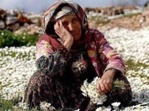 2023'te Türkiye nüfusunun yüzde 10,2'si yaşlılardan oluşacak