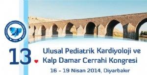 13. Ulusal Pediatrik Kardiyoloji ve Kalp Cerrahisi  Kongresi Diyarbakır'da başladı