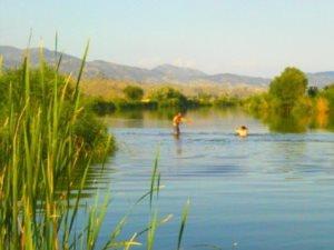 Osmancık'ta sıcaktan bunalanlar kızılırmak'ta serinliyor