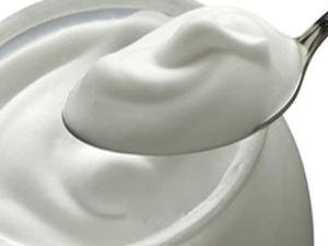 Probiyotik yoğurt obezite düşmanı