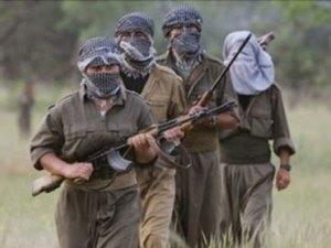 Tunceli'de 3 sağlık personeli, teröristlerce bir süre alıkonuldu