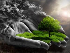 Ekoloji temelli doğa eğitimi hayata geçiyor