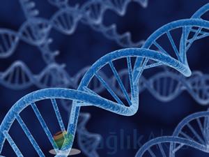Türkiye'nin genetik veri tabanı oluşturulacak