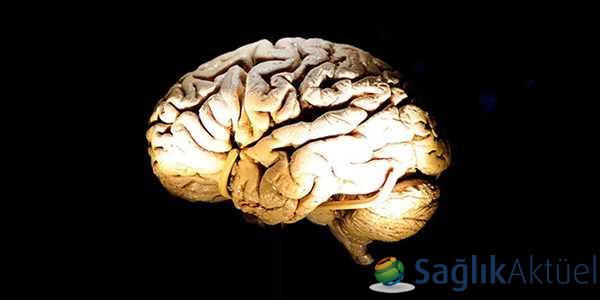 Beyin, sabahları daha büyük oluyor!