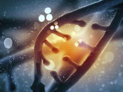 Yapay DNA ile rahim kanserini tedavi ettiler