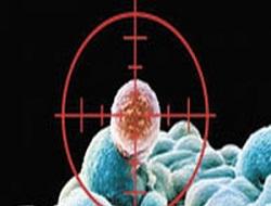 Tümör ve kanserli kök hücrelere karşı yeni ilaç