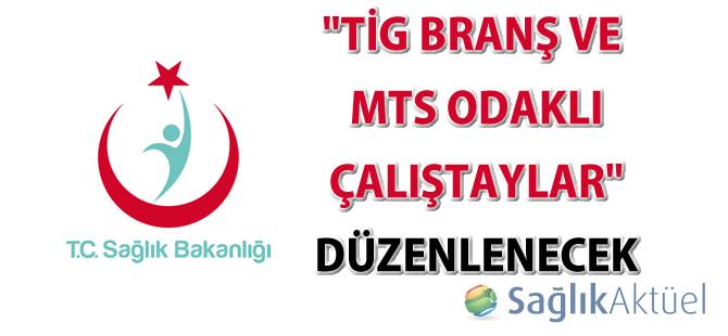 """""""TİG Branş ve MTS Odaklı Çalıştaylar"""" düzenlenecek"""