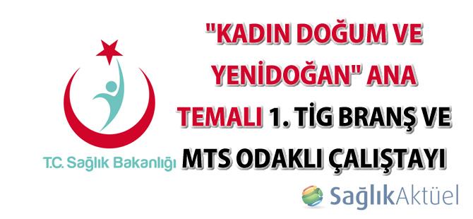 """""""Kadın Doğum ve Yenidoğan"""" Ana Temalı 1.TİG Branş ve MTS Odaklı Çalıştay Dokümanı"""
