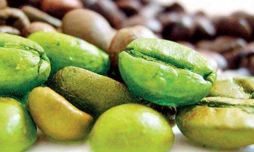 Yeşil kahve çekirdeği zayıflamanıza yardımcı oluyor