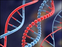 Kanserde büyük gelişme: Bağışıklık sisteminin şifresi çözüldü