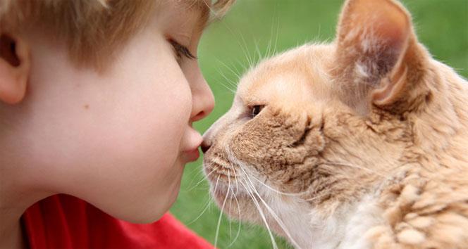 Küçük yaşta kedi besleyen çocuklarda şizofreni riski!