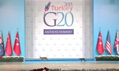 G20 için sağlık ordusu iş başındaydı