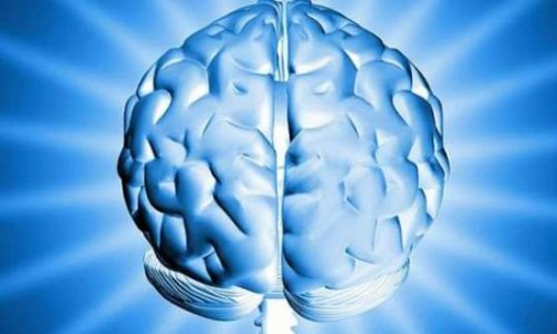 Tıp dünyası şokta! Beyni yok ama sorunsuz yaşıyor