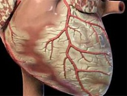 Hızlı kalp atışı kalp krizi habercisi