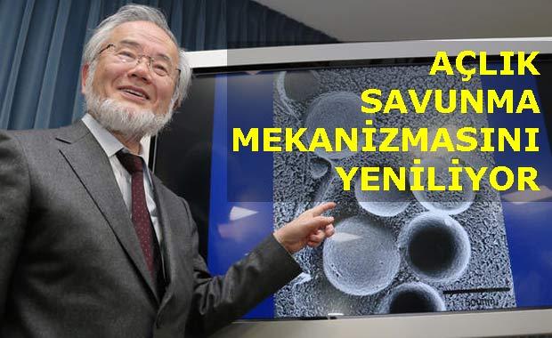 Nobel tıp ödüllü 'aç kal uzun yaşa' çalışması