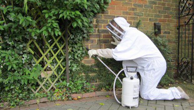 Böcek İlaçlama İşleri