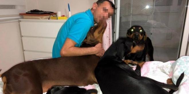 Eşindeki köpeklerini görme talebini üst mahkeme de reddetti