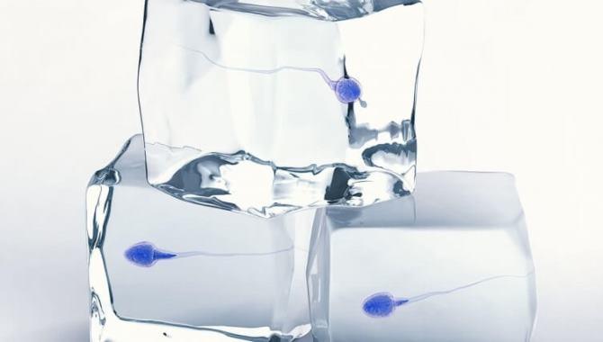 Sperm dondurma nedir, nasıl yapılır?