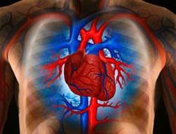 Kalp zarından kalp kapakçığı yapıldı