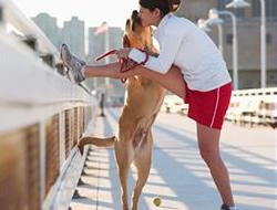 Köpekle yapılan spor kalbi genç tutuyor