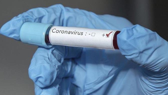 Dünya genelinde Kovid-19 tespit edilen kişi sayısı 52 milyon 441 bini geçti