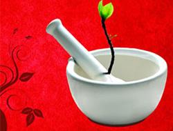 Bitkilerle tedavi sempozyumu sürüyor