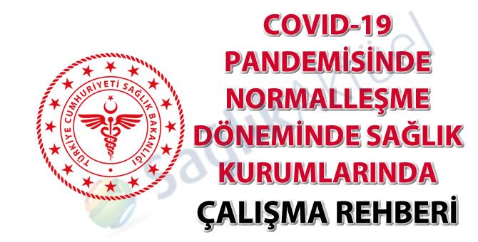 COVID-19 Pandemisinde Normalleşme Döneminde Sağlık Kurumlarında Çalışma Rehberi