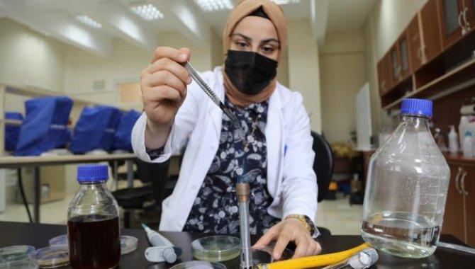 Bingöl Üniversitesi öğretim üyesi propolisten boğaz ve burun spreyi üretti