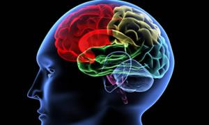 Beynin kimyasını değiştiren mevsim!