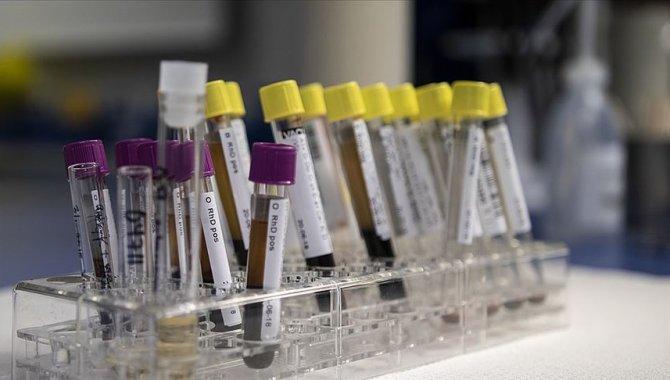 Viral hepatitler tüm dünyada halk sağlığı sorunu olmaya devam ediyor