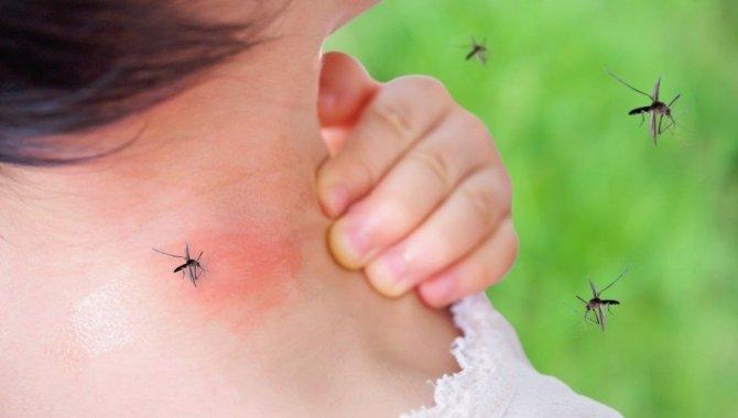 Yaz aylarında böcek ısırmalarına karşı dikkatli olunmalı