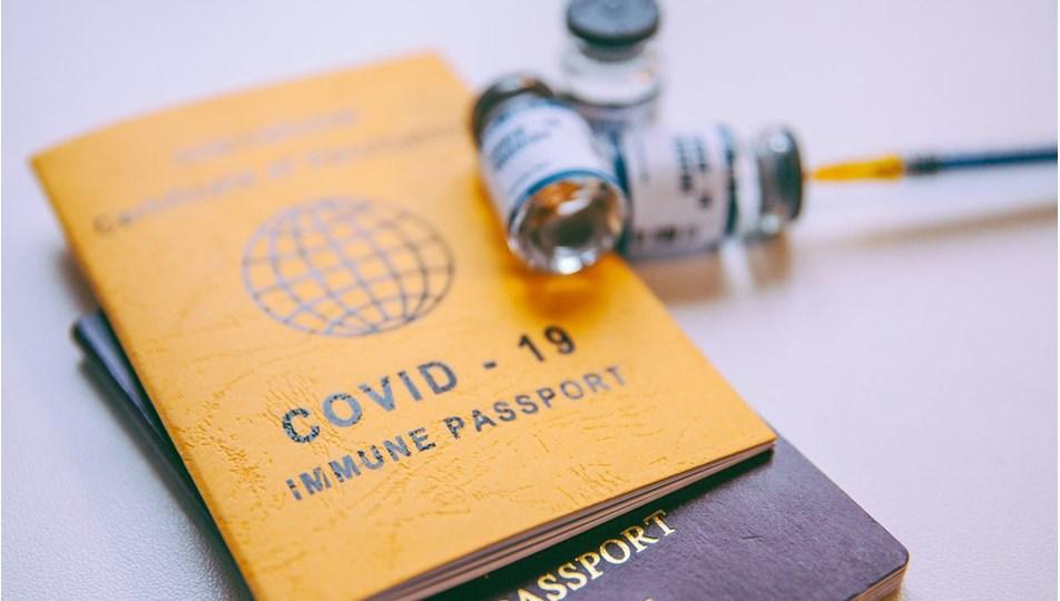 Aşıları tamamlanan Türk vatandaşlarının AB'de seyahat edebileceği ülke sayısı artıyor