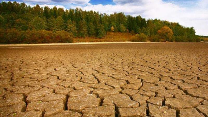 """İklim kriziyle mücadelede hedeflere """"yeni yapılanmayla"""" ulaşılacak"""