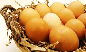 Bozulan yumurtayı anlamanın püf noktaları