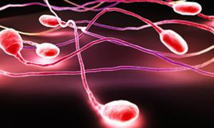 Sperm kalitesini korumanın yolu