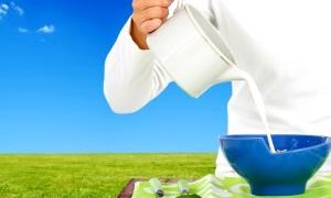 Süt ürünleri, kanser riskini azaltıyor