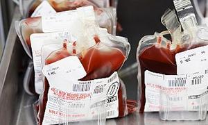 Kan vermek için en uygun dönem