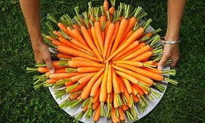 Rengi turuncu faydası büyük!