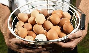 Zayıflatan yumurta!