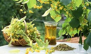 Nezle ve gribe bitkisel çözümler